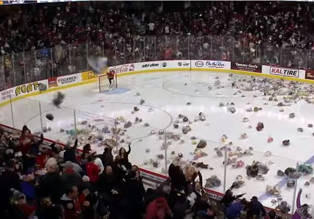 Osos peluche hockey