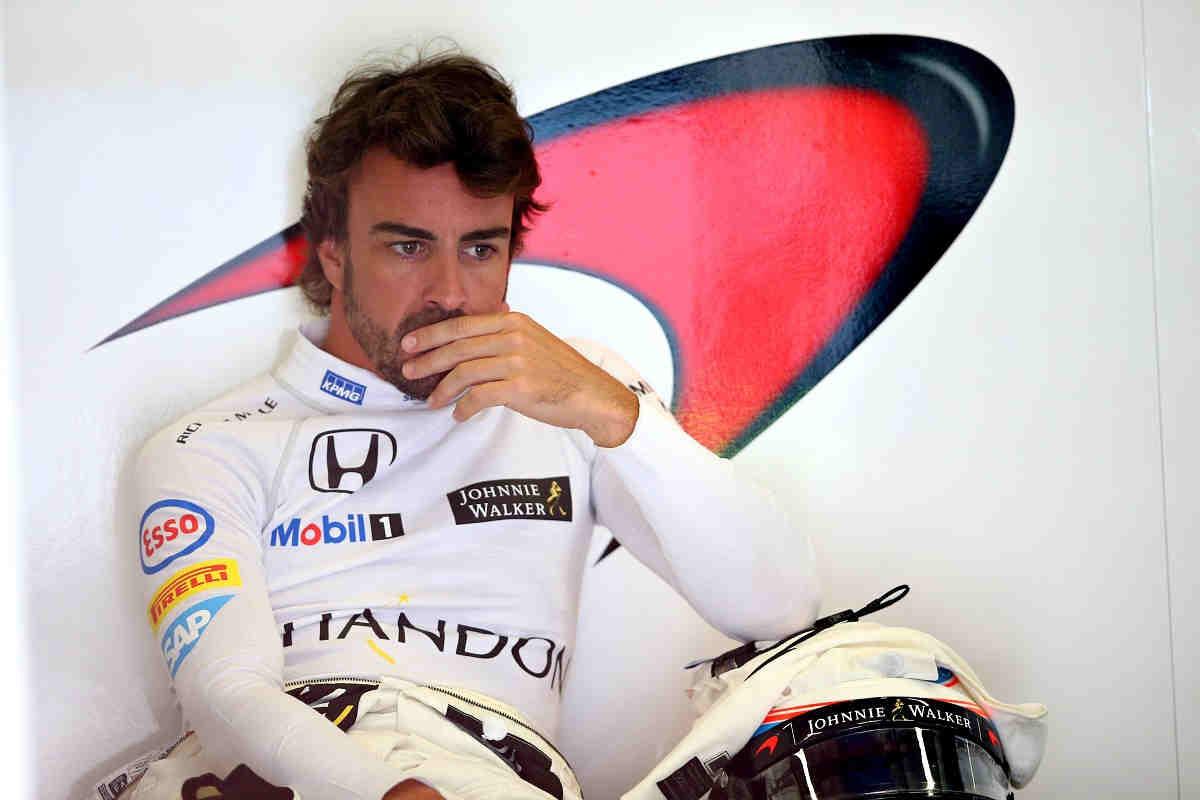 Fernando Alonso pictur... Amy Winehouse