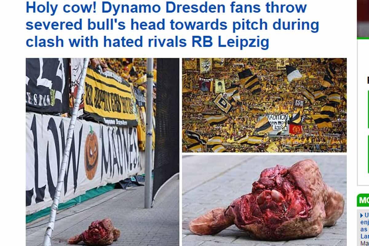 Dynamo cabeza toro