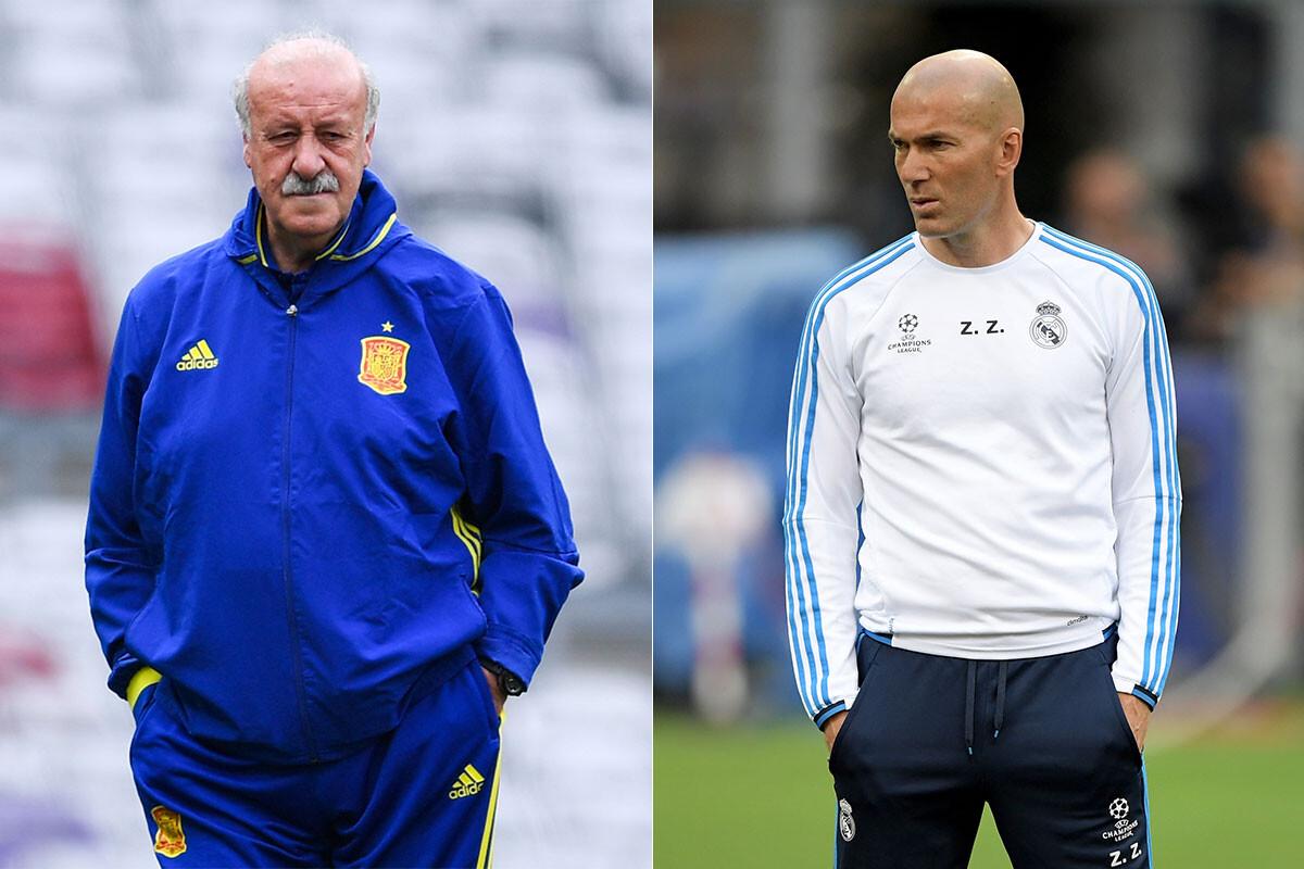 Vicente del Bosque, Zinedine Zidane