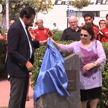 Luis Aragonés ya tiene su plaza